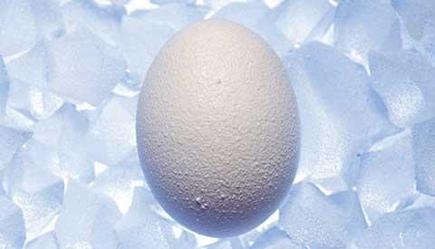 美国冻卵服务介绍