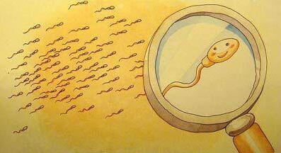 【台湾试管婴儿多少钱】_美国试管婴儿会遗传基因吗?