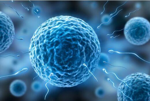 【美国试管婴儿要多少钱】_在试管婴儿过程中,究竟什么阻挡精子成活率呢?