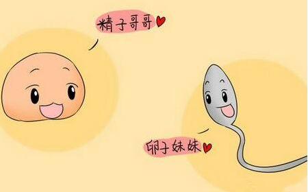 【广东做试管婴儿哪家好】_精子活力低下能不能做试管婴儿呢?