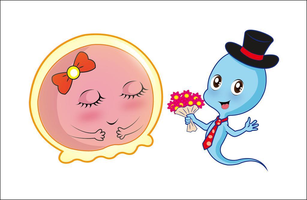 【广州广医三院试管婴儿】_试管科普:精子与卵子的幸孕之旅