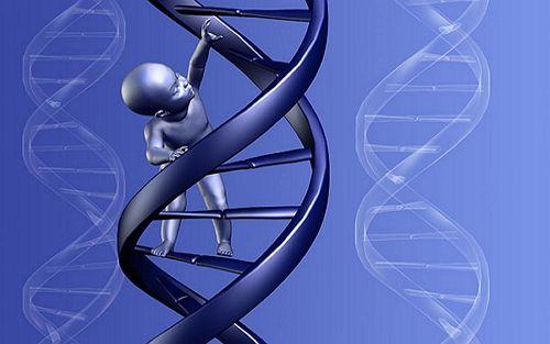 """【贵阳试管婴儿多少钱】_试管技术:PGD基因诊断是避免出生缺陷的方法,过程中""""先证者""""非常重要?"""