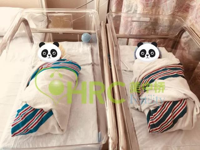 龙凤胎宝宝出生啦!恭喜C女士10年求子终圆梦!