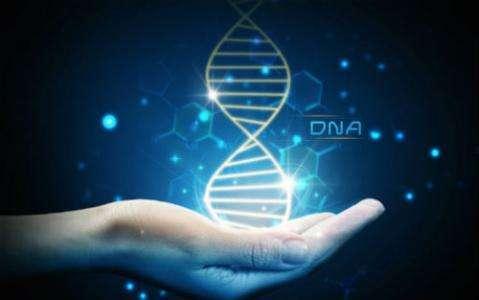 【美国试管婴儿三代】_【试管科普】了解五种伴性遗传病!