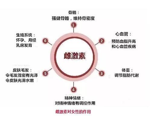 【广州十大试管婴儿排名】_美国试管婴儿前为什么要检查雌激素呢?