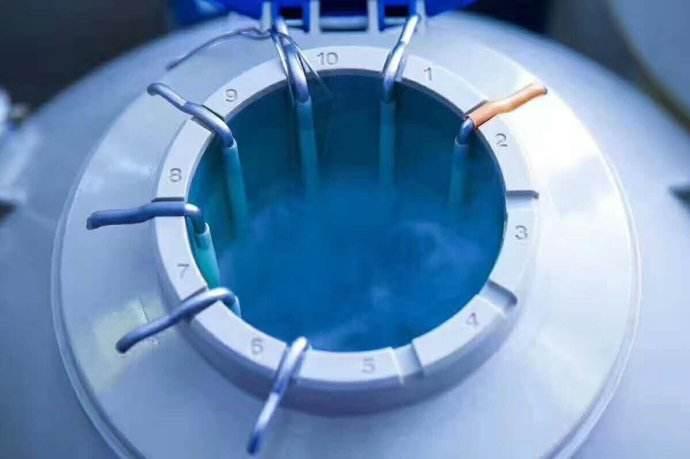 【深圳哪里有试管婴儿】_美国试管婴儿解冻胚胎质量的好坏,由什么来决定?