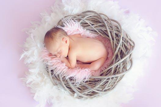 【试管婴儿费用成功率】_精子和卵细胞体外结合受精之后,受精卵是如何被培育的呢?