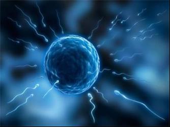 【泰国试管婴儿网站】_提高美国试管婴儿胚胎着床率的5个因素,你一定要早知道