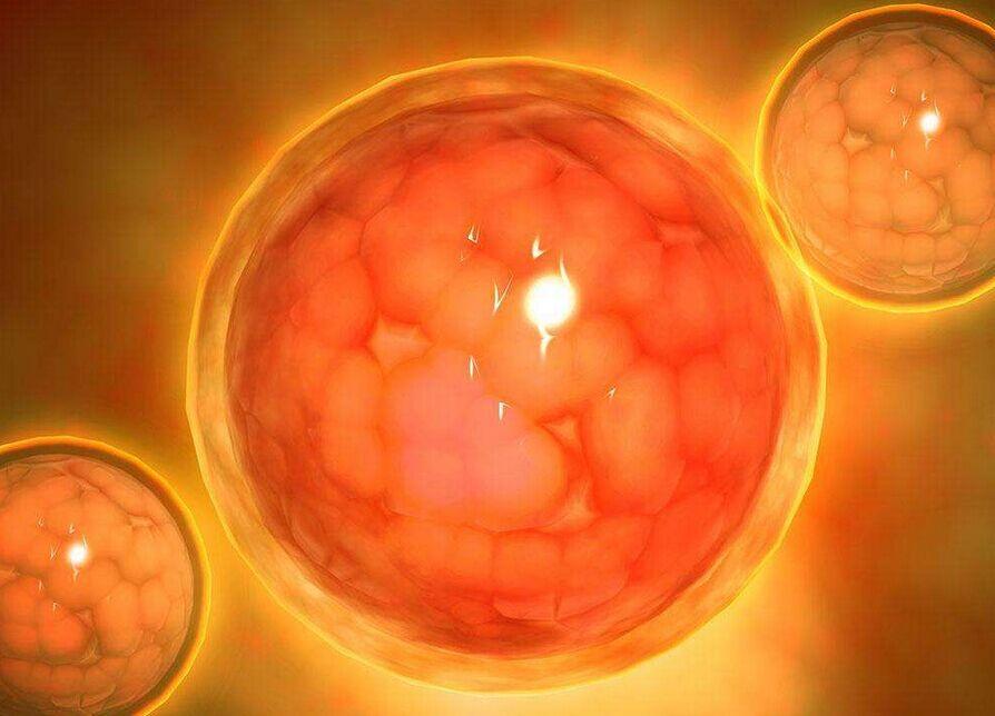 【泰国试管婴儿机构】_美国试管婴儿移植术后胚胎会不会流出来?