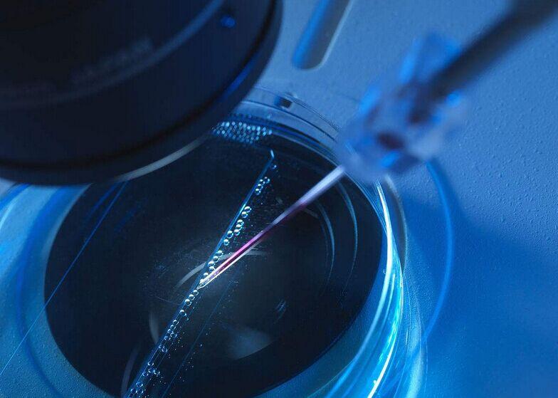 【做试管婴儿全部费用大概是多少】_美国试管婴儿的胚胎等级会影响胎儿的发展吗?