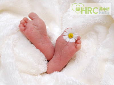美国试管婴儿取卵费要多少钱一次