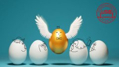 美国试管婴儿要取出多少个卵子