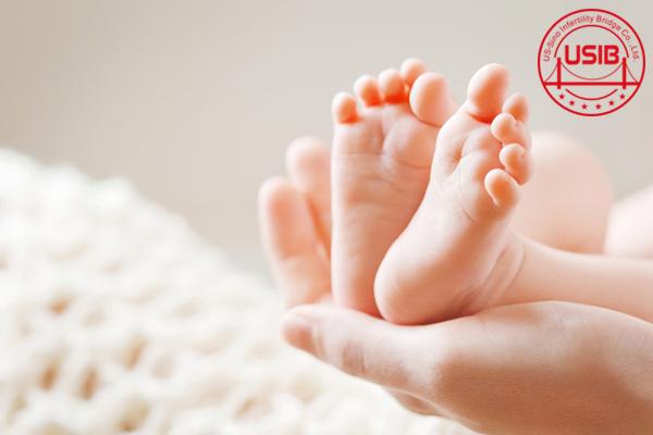 【泰国试管婴儿报价】_决定美国试管婴儿成功率的因素有哪些