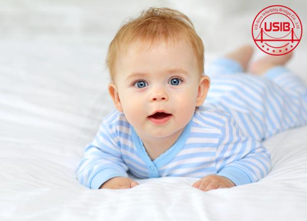 【哪里试管婴儿费用低】_美国试管婴儿成功率怎么样?