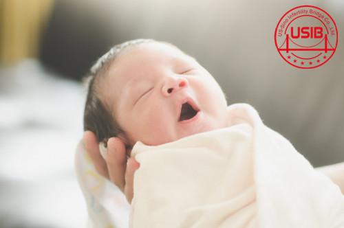 试管婴儿费用需要花多少钱