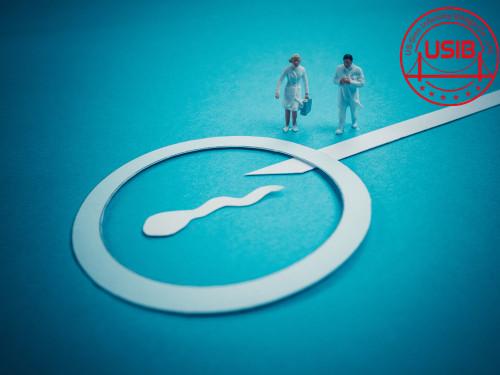 【南宁第三代试管婴儿费用】_胚胎停育不可怕 美国试管婴儿专家有妙招!
