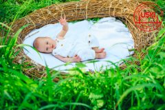 试管婴儿洗精术真的有用吗?